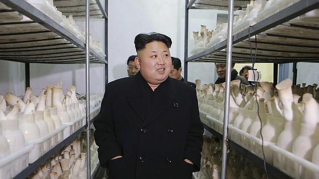 Kim Jong Un en Pyongyang