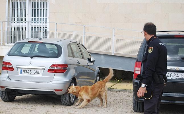 Finaliza el curso canino de la polic a nacional la voz - Policia nacional cadiz ...