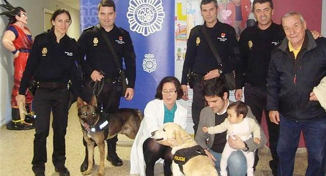 La polica nacional hace una exhibicin con guas caninos en - Policia nacional cadiz ...