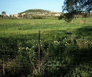 Ecologistas en Acción denuncia la ocupación del 'Carril de los Aceiteros'
