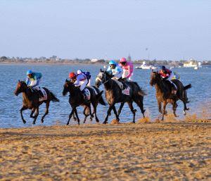 Más de 200 caballos inscritos para el segundo ciclo de la cita sanluqueña