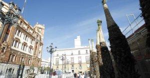 Plaza de las Flores y las palmeras