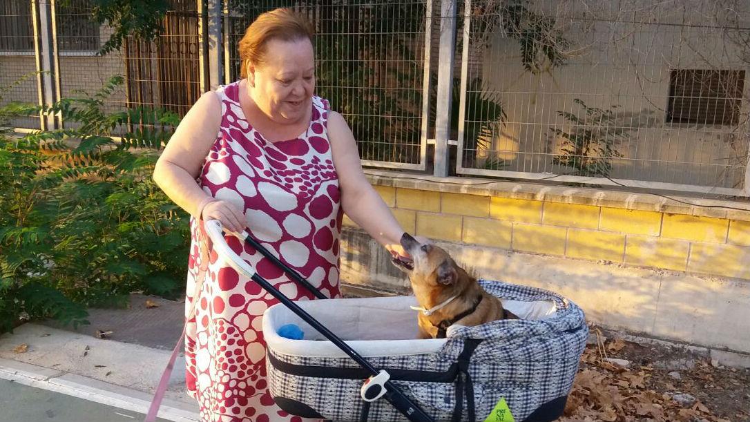 Rosario pasea por una calle de Jaén junto a sus 2 perros.