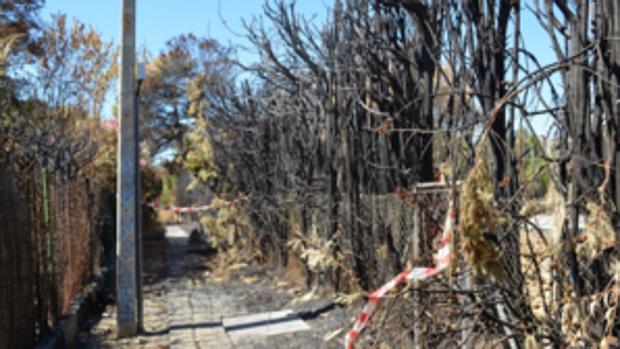 Parte de la senda afectada por el fuego-ABC