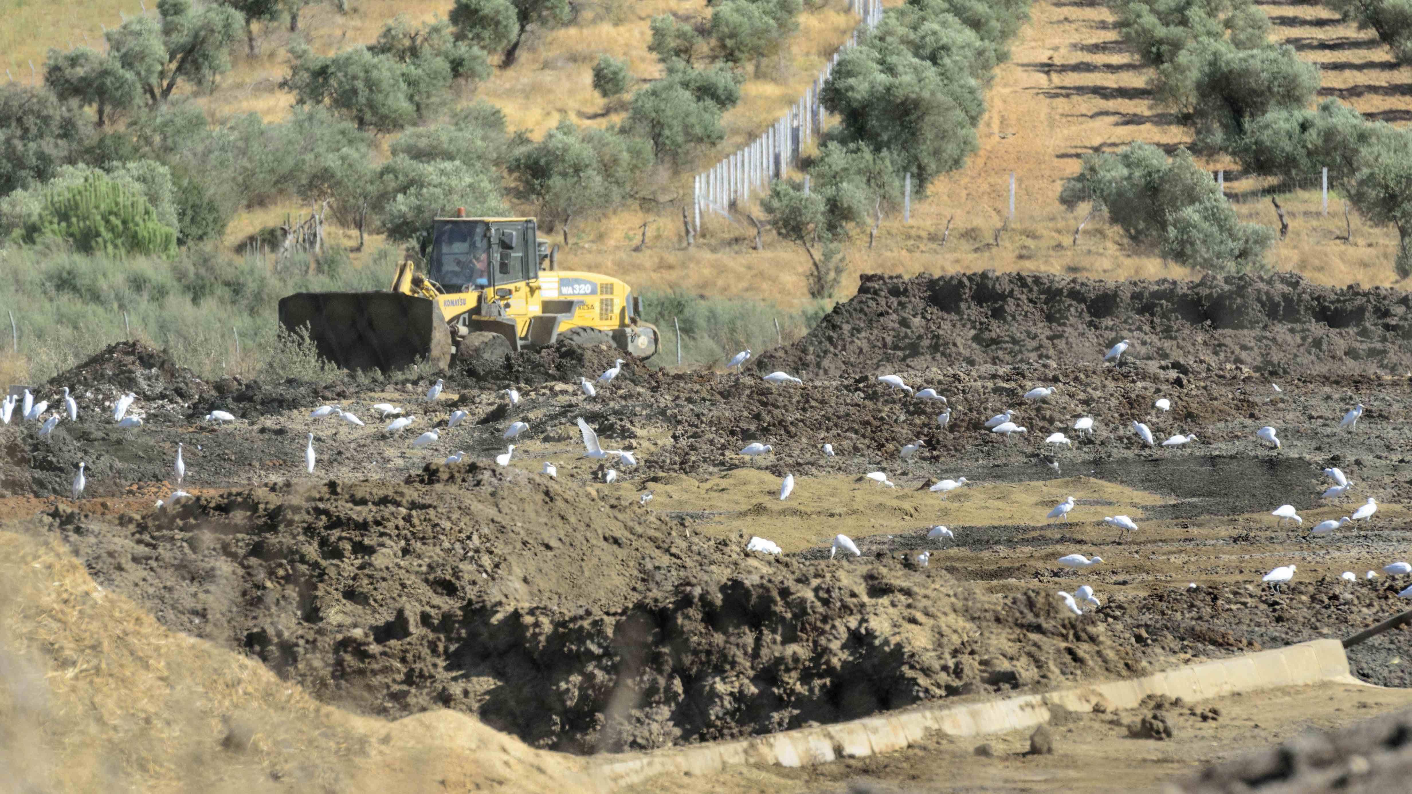 La oposición señala a la planta de compostaje El Raigal como causante de los malos olores