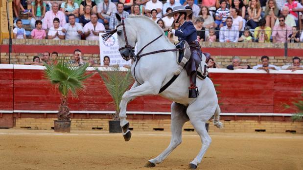 Uno de los jinetes en un espectáculo a beneficio de Proyecto Hombre Huelva