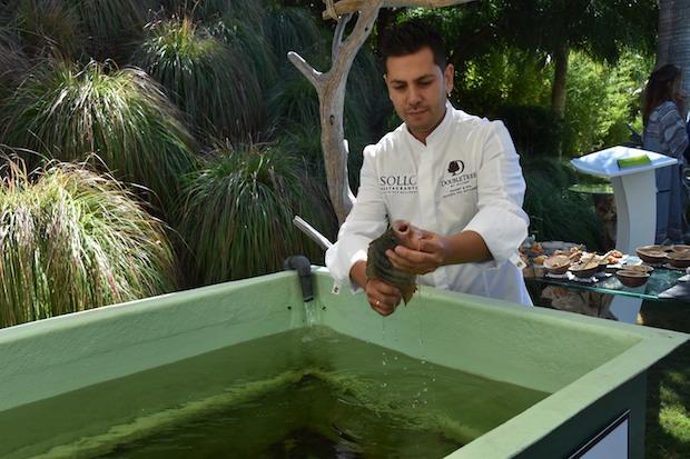 Diego Gallegos con una de las tilapias que ya cultiva en su piscifactoría / J.J.M.