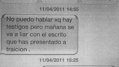 Mensaje de la exconcejal Isabel Nieto al director, que se negó a rectificar un informe «ilegal»