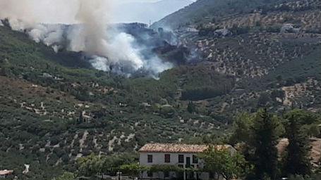El incendio se produjo en una zona próxima a un núcleo de viviendas