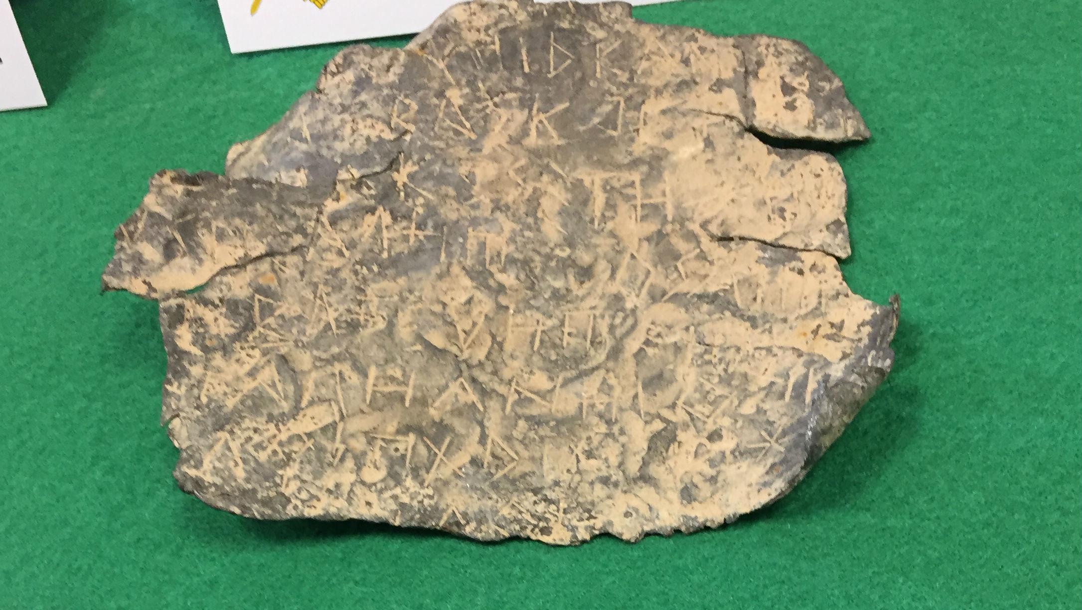 Las láminas ibéricas recuperadas proceden de yacimientos de Jaén.