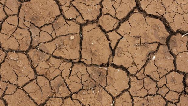 Tierra reseca en la cuenca del Guadalquivir.
