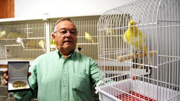 Joaquín Triguero con el ejemplar que ha sido calificado como el mejor canario de España