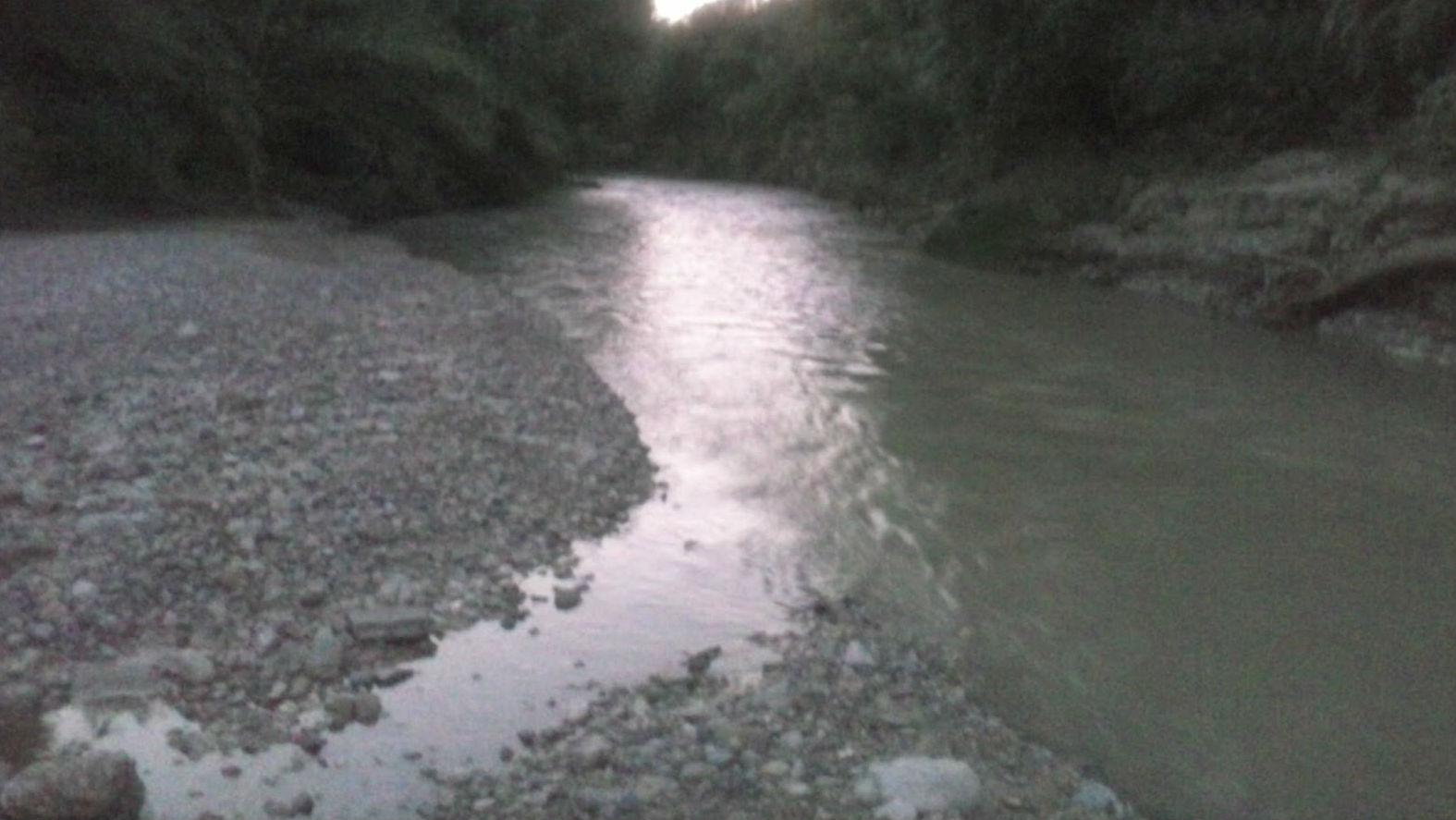 La mortandad de peces se produjo en el río Guadalbullón
