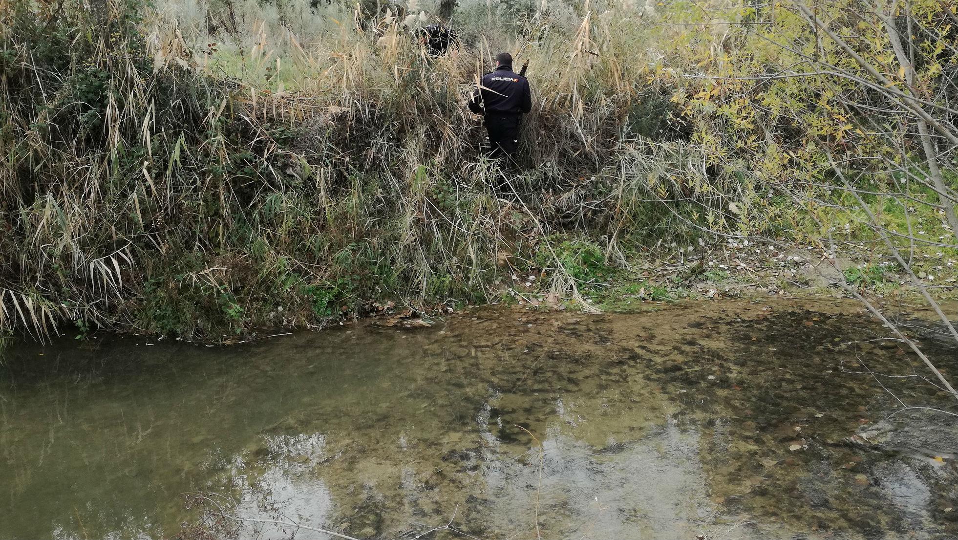 Un agente inspecciona la orilla del río Víboras en el marco de la operación.