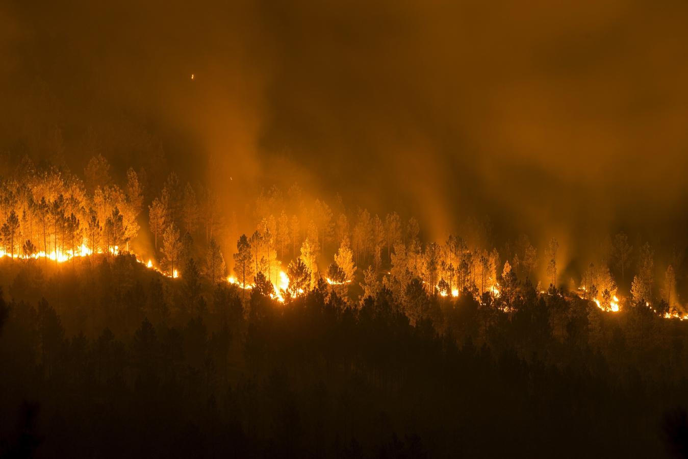 Vista del incendio forestal declarado en la localidad orensana de Entrimo, uno de los muchos incendios forestales sin control que han cercado casas, provocado desalojos y afectado a zonas de alto valor ecológico.