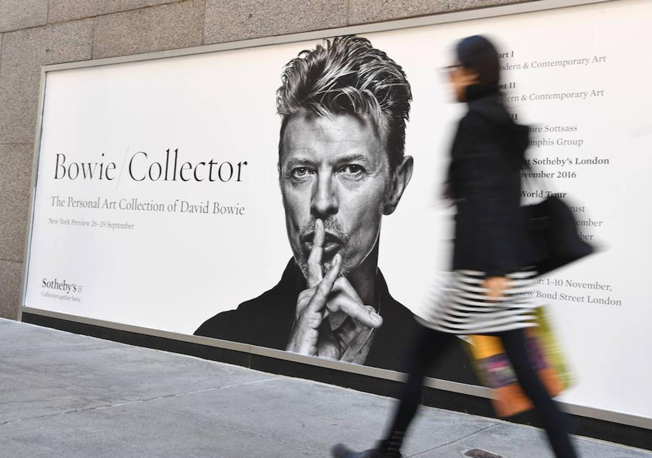 «Bowie Collector»