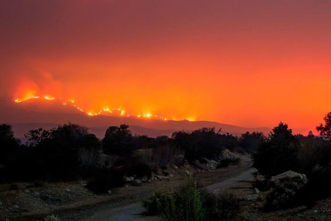 El fuego «Thomas» arde detrás de senderos en la carretera Old Baldwin, Ojai, California