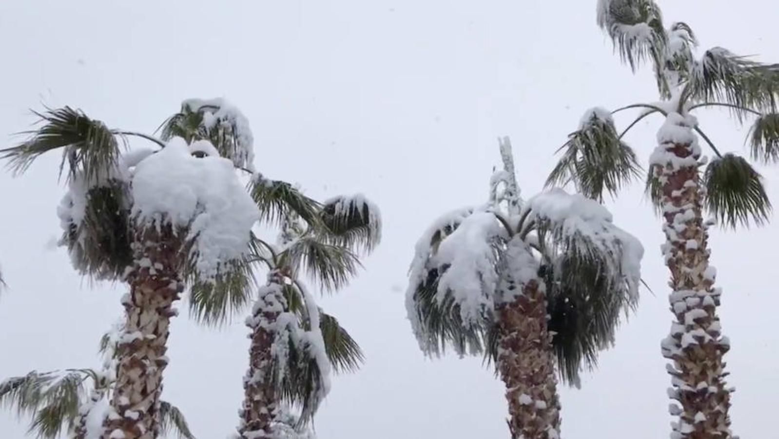 Por primera vez en una década, la nieve ha llegado a las calles de Las Vegas