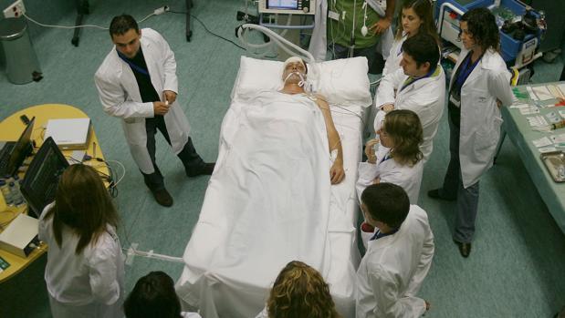 Médicos en Granada asisten a un curso de trasplantes