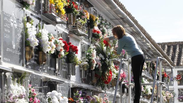 Una mujer adecenta una tumba en el cementerio de San Rafael