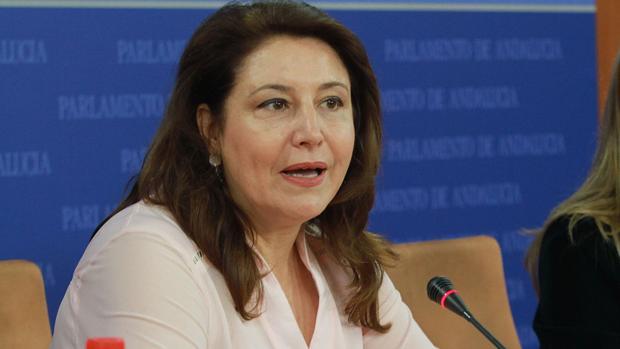 La portavoz parlamentaria popular, Carmen Crespo