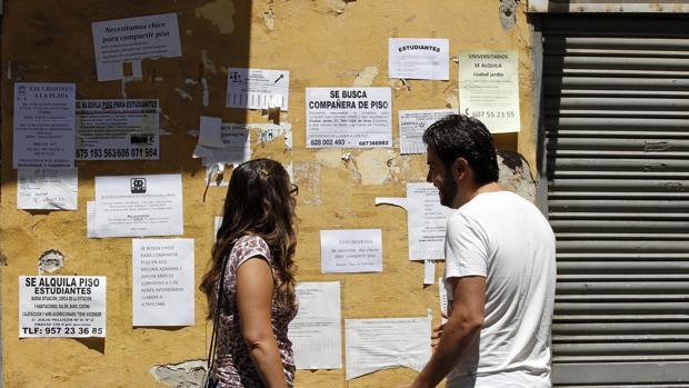 Una pareja consulta los carteles que anuncian viviendas en alquiler