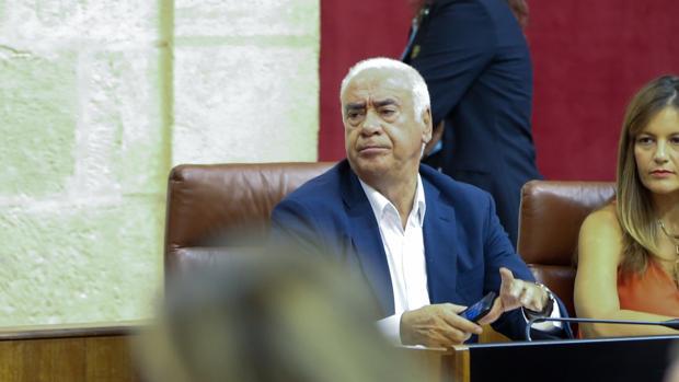 Luciano Alonso, en el Parlamento el miércoles