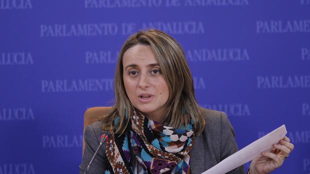 «El curso escolar comienza en Andalucía con el suspenso del profesorado» a la Junta