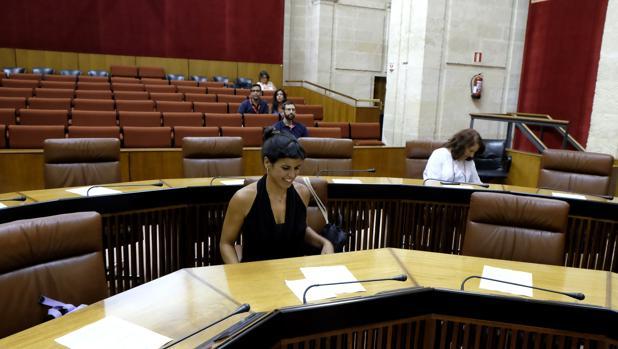 Teresa Rodríguez, portavoz de Podemos, en el Pleno de esta última semana