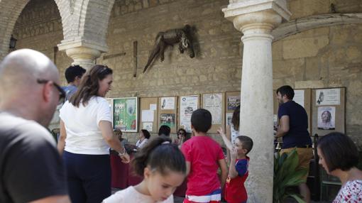 El caimán, en el muro del Santuario de la Fuensanta