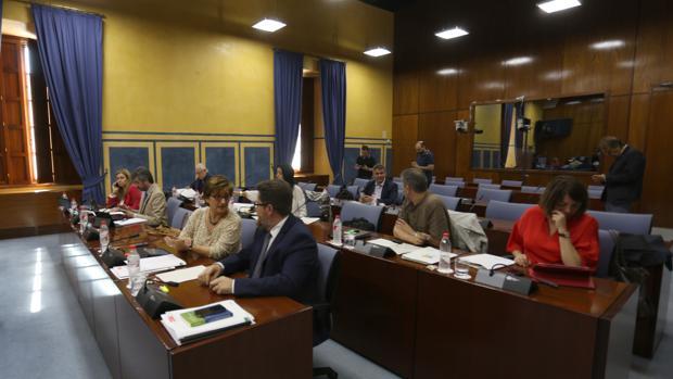 Los miembros de la comisión de investigación del Parlamento durante una de las sesiones