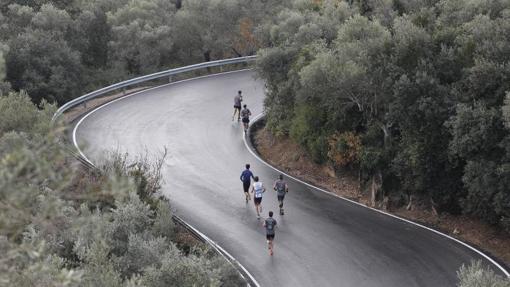Un grupo de corredores durante una prueba que asciende a la Sierra