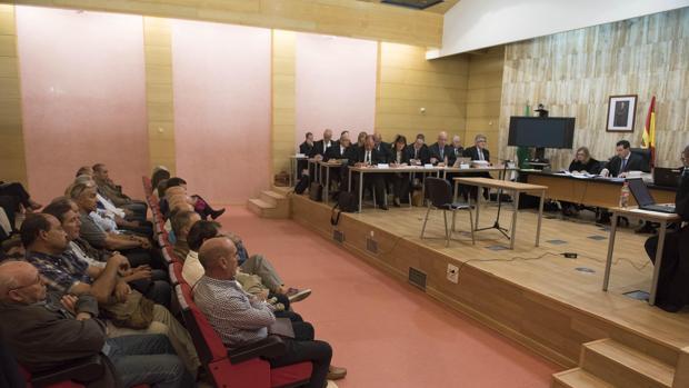 Medio centenar de acusados, sentados en el banquillo en una sala habilitada por la Audiencia de Granada