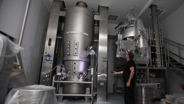 Interior de la planta de Pérez Giménez cerrada a cal y canto en Almodóvar del Río