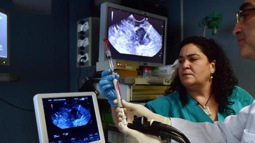 Profesionales sanitarios preparan una endoscopia