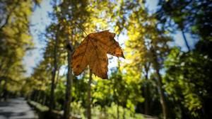 Los expertos auguran que Andalucía tendrá un otoño más cálido de lo habitual