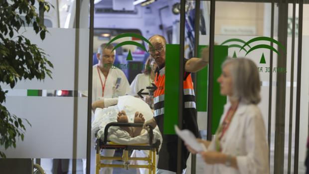 El plan dirigido a los enfermos graves se desaerrollará entre 2017 y 2020