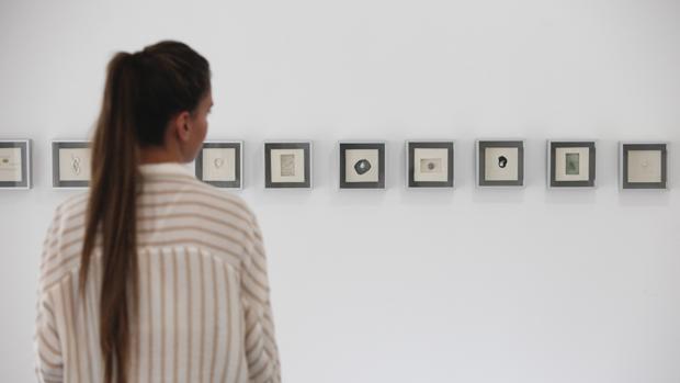 La muestra inaugurada ayer en la galería Carmen del Campo