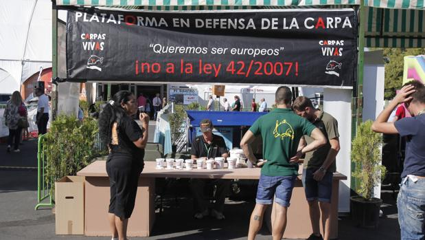Stand de la Plataforma en Defensa de la Carpa, ayer en Intercaza