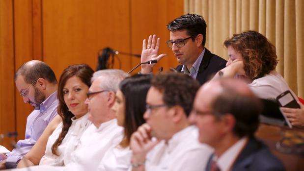 Pedro García en el Pleno extraordinario del viernes