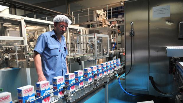 Cadena de producción de la planta de Covap en Pozoblanco