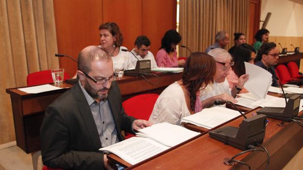 Grupos de IU, PSOE y Ganemos
