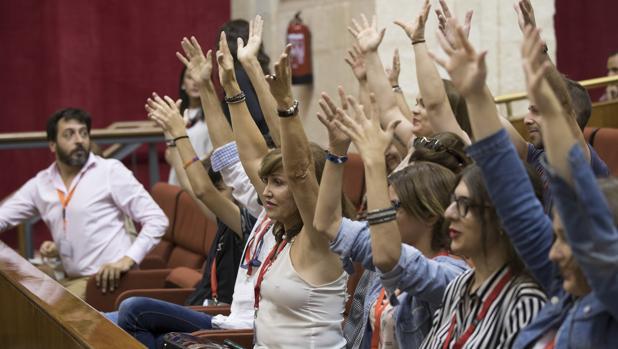 Representantes de colectivos LGTBI durante el debate plenario