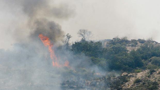 Incendio de arboleda y matorral bajo en Córdoba