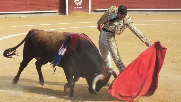Festejo en la Plaza de Toros de Montoro, ayer