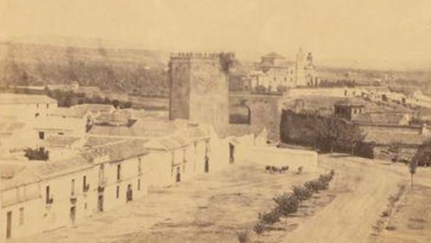 La torre, en 1862, con la higuera visible a la derecha