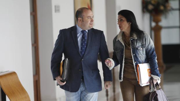 Julio Díaz, presidente de la comisión de investigación junto a la diputada de C's Marta Bosquet