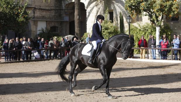 Una amazona a lomos de un caballo en una anterior edición de la cita
