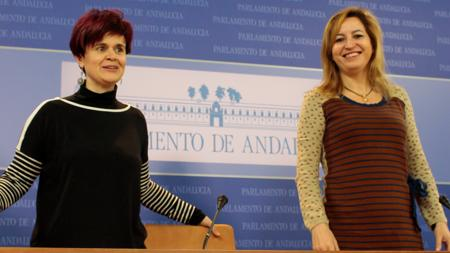 Esperanza Gómez y Carmen Lizárraga, pesos pesados de Podemos en el Parlamento