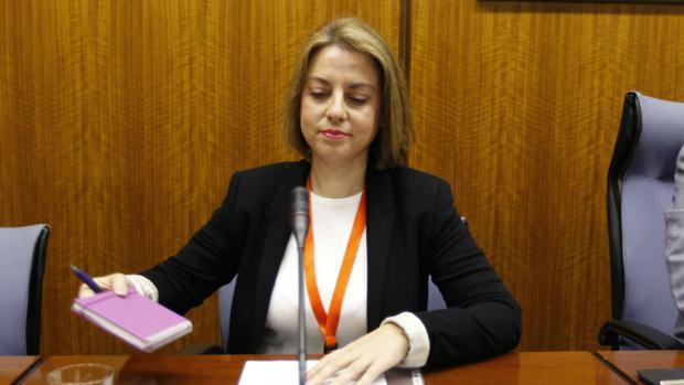 Irene Sabalete, ex elegada de Empleo de Jaén, exculpada del caso Formación